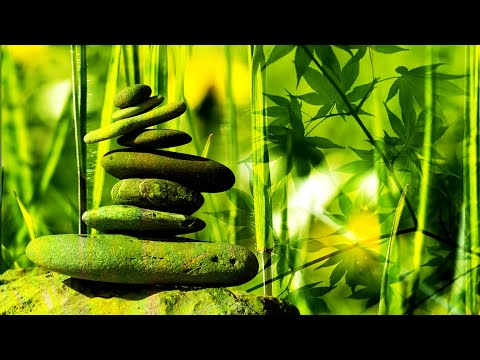 Zen Music,Meditation music , Yoga music,Copyright and royalty free meditation music,Relaxing music,