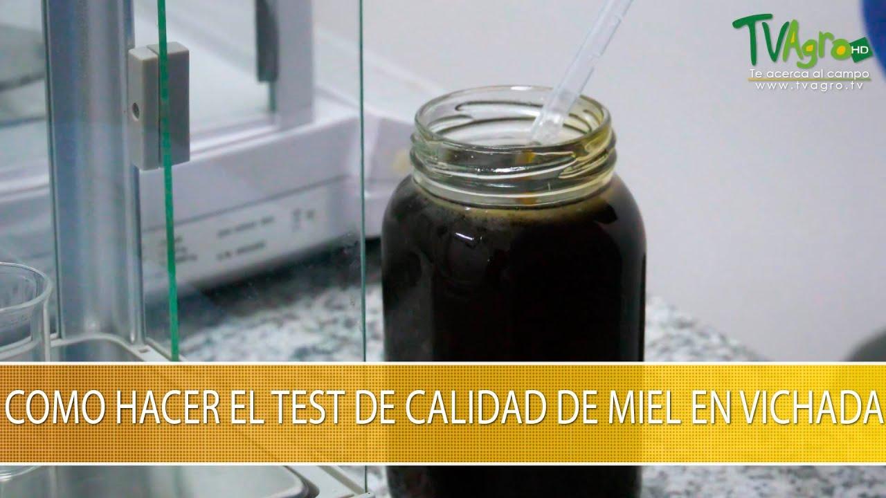 Como Hacer el Test de Calidad de Miel en Vichada- TvAgro por Juan Gonzalo Angel Restrepo