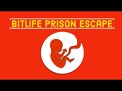 How To Escape Every Prison and Jail in BitLife (UPDATED) | WP Mobile