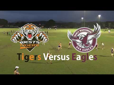 Round 9 - Tigers Versus Eagles - Inferno Super Series Women'