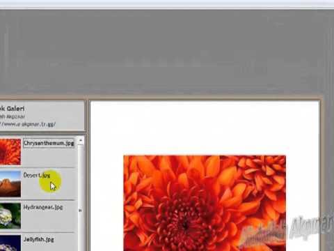 Photoshop: Web Resim Galerisi Yapmak