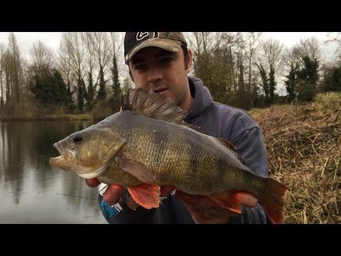 Fishing For Big Perch - A New PB