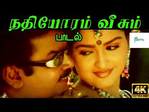 Nadhiyoram Veesum Thendral ||நதியோரம் வீசும்  || Unni Krishnan, Bhavatharini || Love Duet H D Song