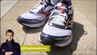 Искусственный мир | ЕХперименты с Антоном Войцеховским