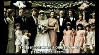 Marlon Brando - Anécdotas sobre El Padrino
