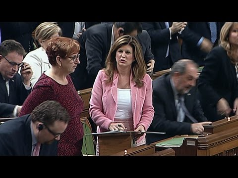 Elbowgate : Opposition leader Rona Ambrose addresses Commons fracas