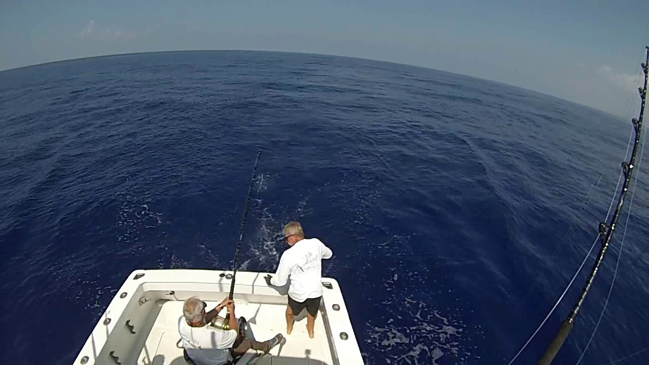 Hula girl sport fishing charters kona hawaii youtube for Hawaii fishing charters