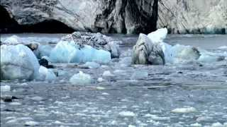 EARTH A Fearless Planet 1080p FullHD Amazing Documentary
