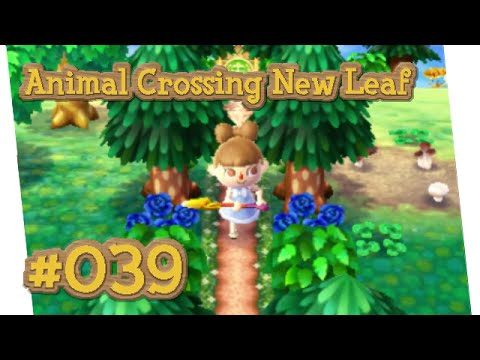 Animal Crossing New Leaf 039 Trampelpfad Youtube