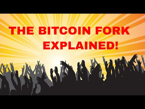 Bitcoin Fork? What Is Bitcoin Cash? What Should You Do?