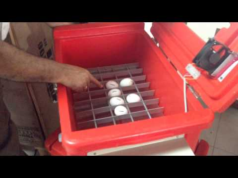 solar power incubator part 2 Solar Power Low Cost chicken or Egg Incubators