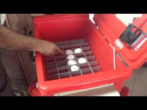 solar power incubator part 2 Solar Power Low Cost chicken or Egg IncubatorsKaynak: YouTube · Süre: 3 dakika