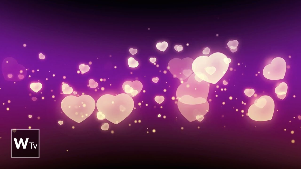 Hearts Love Background Hd Video For Wedding Animation Youtube
