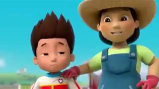 Download Paw Patrol Animation Movies For Kids Pups Save A Baby