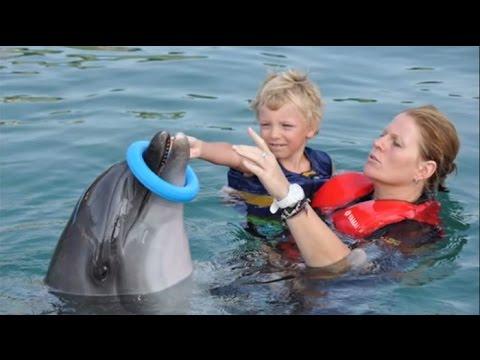 Dolfijntherapie in Marmaris