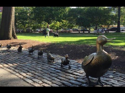 MA: Boston Attractions