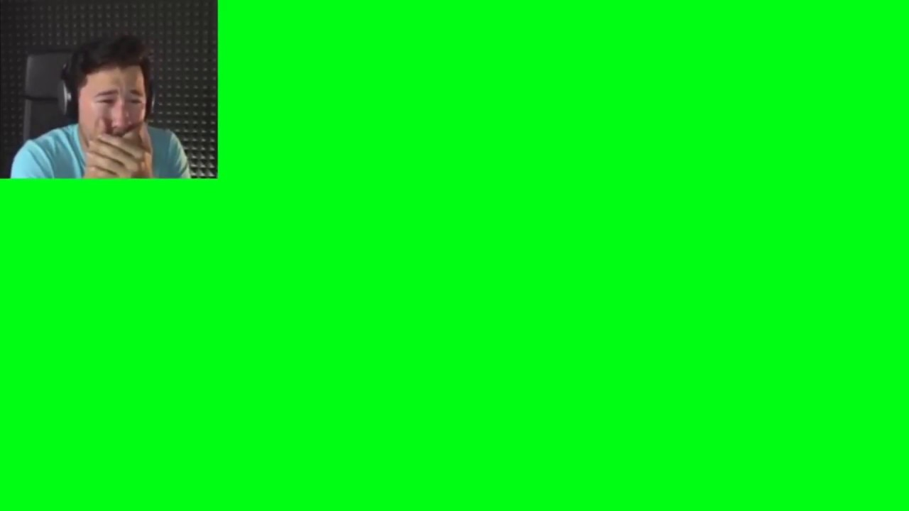 Crying Cat Meme Green Screen It S Meme Cats