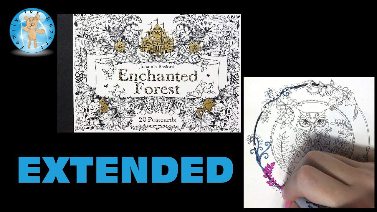 Enchanted Forest Johanna Basford Adult Coloring Book Postcards Owl Circle Extended Family Toy Report