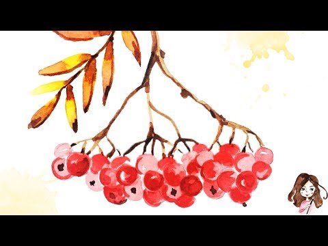 Tutorial: Paint Autumn Watercolor Berries step-by-step!