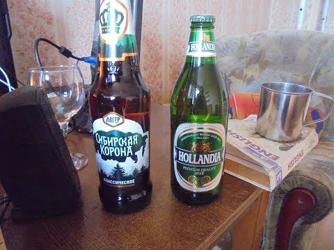 пиво Hollandia и сибирская корона оценки и влог