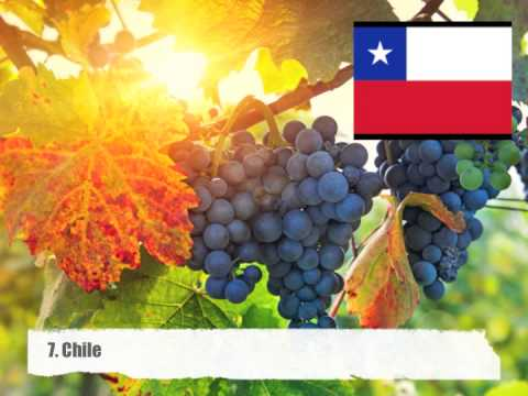 Top 10 Grape Producing Countries