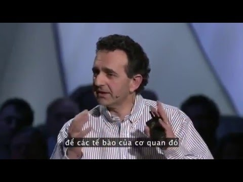 Sản phẩm Vision: tiến sĩ Anthony Atala