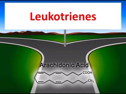 Leukotrienes in 2 minutes ; Production and Inhibitor drugs