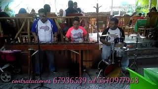 DESIGNER MUSIC - DISEÑADOR DE MÚSICA (MARIMBA FASCINACIÓN MUSICAL)