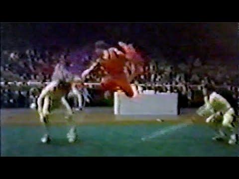 【武術】1984 男子対練 / 【Wushu】1984 Men Duilian (Dual Event)