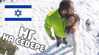 Влог | Новый год на СЕВЕРЕ ИЗРАИЛЯ | Хермон, Голаны и коты :)) | Жизнь в Израиле