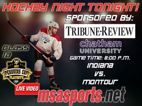 MSA Sports Hockey Spotlight - Playoffs:  Indiana vs. Montour  3/13/17