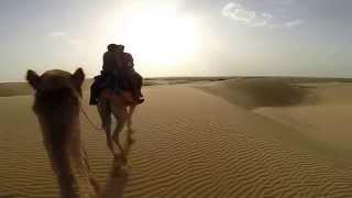 Туры в Индию - пустыня Тар, сафари на верблюдах. Desert Thar, India(незабываемое сафари на верблюдах в пустыне Тар, что в штате Раджастан, Индия. Тур по настоящей Индии http://turind..., 2014-04-23T08:24:26.000Z)