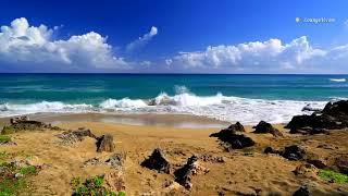 Футаж Море
