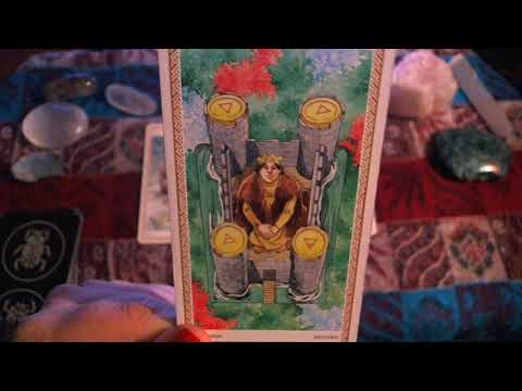 Jared Kushner Tarot Reading