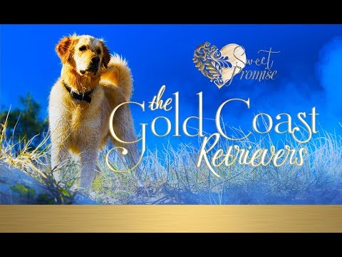 The Gold Coast Retrievers from Sweet Promise Press