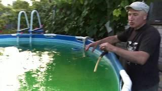 Как сделать бассейн чистым и прозрачным