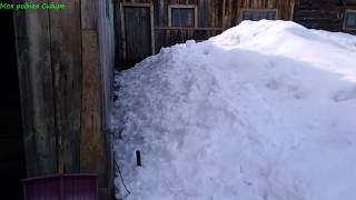 Гуси гуляют. Кот через забор по сугробу пробирается домой. Снег перекрыл дорогу в курятник.