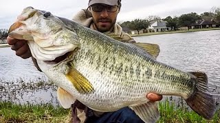 BASS OF A LIFETIME hits RIGHT at the BANK!!!