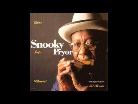 Snooky Pryor - I've Got My Eyes On You