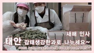 태안TV - 새해 인사 태안 감태생강한과로 나누세요~(…