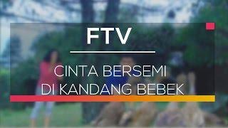 FTV SCTV - Cinta Bersemi Di Kandang Bebek