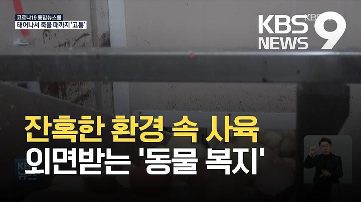 수평아리는 분쇄기로…수퇘지는 마취 없이 거세 / KBS 2021.04.05.