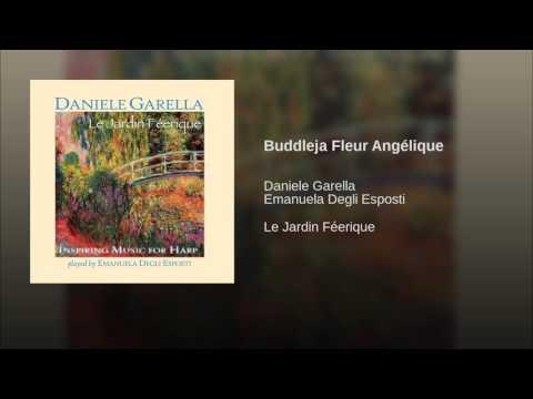 Buddleja Fleur Angélique
