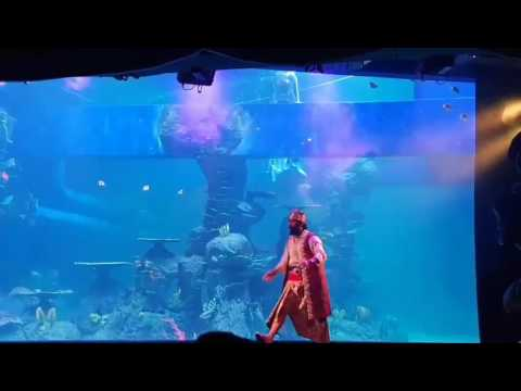 Pearl of the south sea performance at jakarta aquarium at neo soho