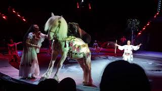 """Это потрясающе!!! Цирк на Вернадского """"Царевна несмеяна."""""""