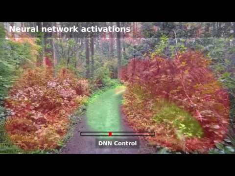 Autonomous Drone Navigation with Deep Learning. Flight over 250 meter Forest Trail