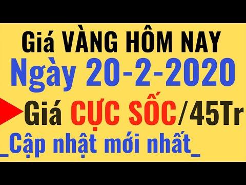 Giá VÀNG Hôm Nay Ngày 20/2/2020 Cao Trên 45triệu, SJC PNJ DOJI 24K 9999 Tỷ Giá USD Ngoại Tệ