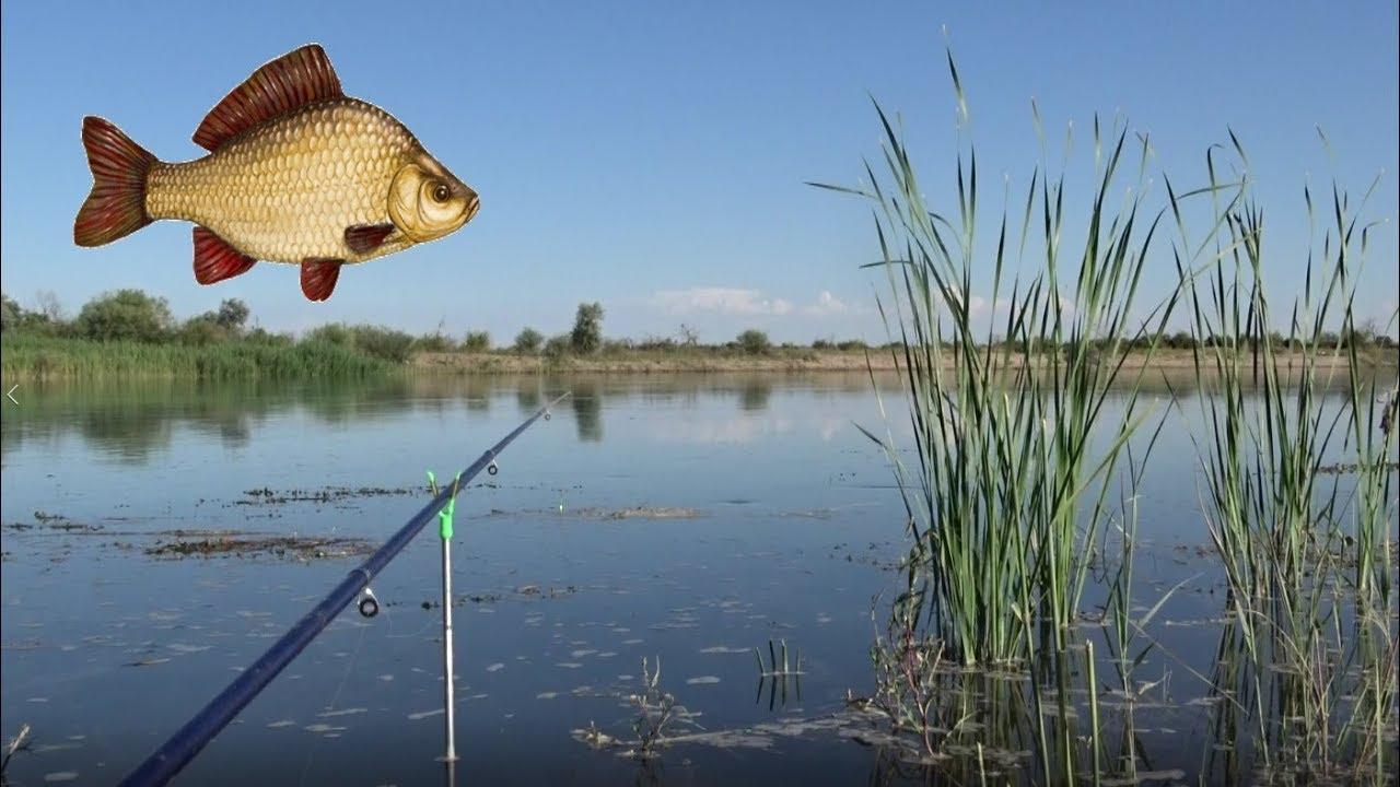 рыбалка рыбацкий рай