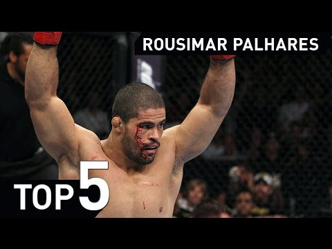 Rousimar Palhares MMA Jiu Jitsu Highlight 2015