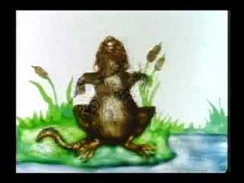 Frog Harmony